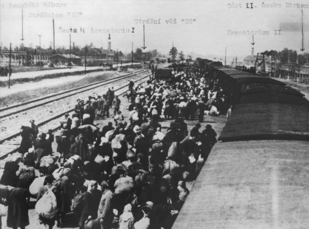 Arriving at Auschwitz.