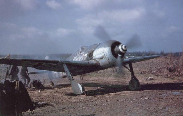 "An Fw 190 A-8 R2 in American hands. ""White 11"" of 5 JG 4 was captured during Operation Bodenplatte after its engine had been damaged by American light flak."