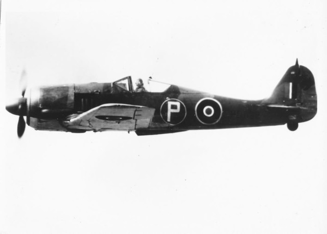 British Fw 190 in flight