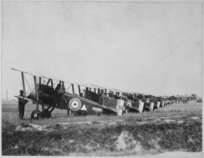 Camels being prepared for a sortie.