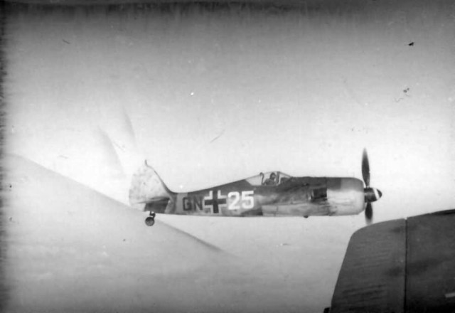Focke-Wulf Fw 190 GN+25 in flight