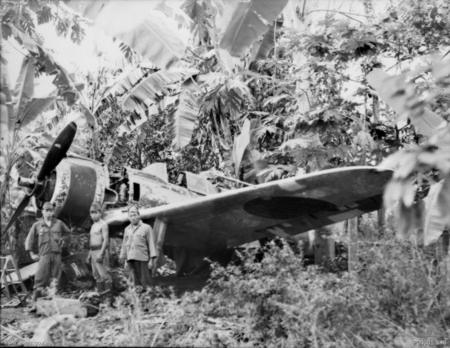 A Japanese Nakajima Hayabusa (s n 750) in dense jungle 6 km from Vunakanau airfield, Rabaul, in September 1945.