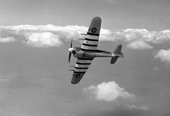 A 1943 photo of a Hawker Typhoon, sporting identification stripes due to similarities with the Fw 190.